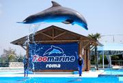 zoomarine_180